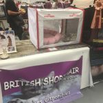 exposition féline british shorthair